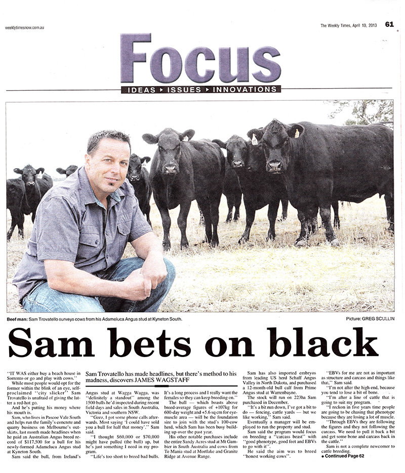 sam-bets-on-black-NP
